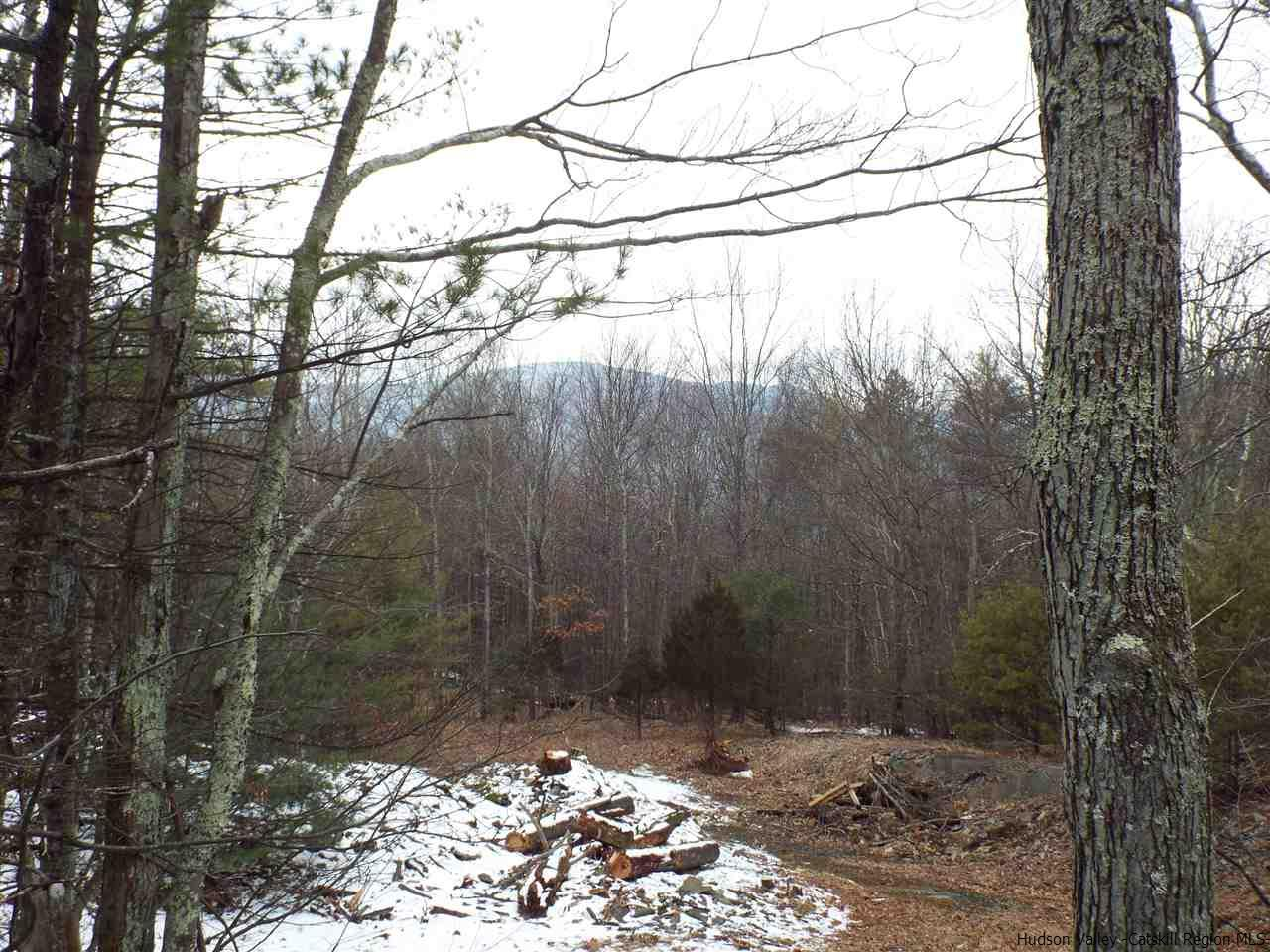 Single Family Home for Sale at LOT 2 BRINK ROAD LOT 2 BRINK ROAD Saugerties, New York 12477 United States