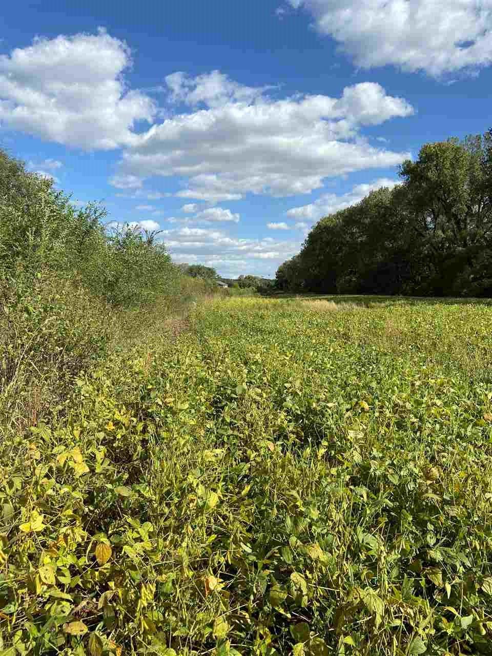 20 Plus acres acres off scenic drive