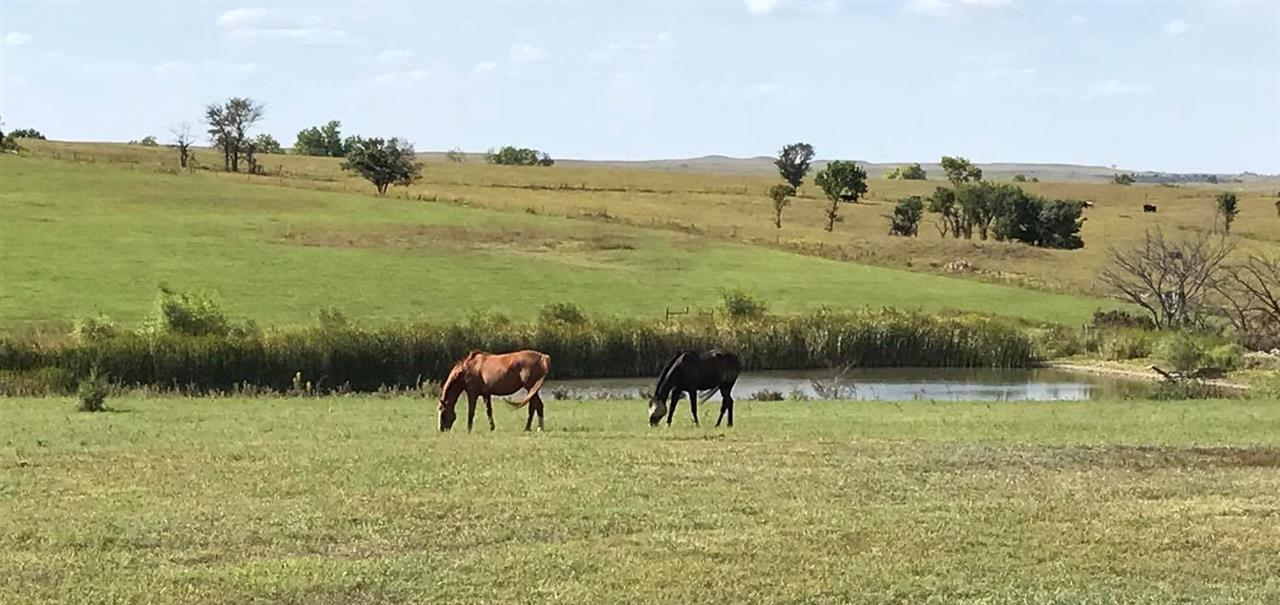 Horse Property located just East of Manhattan, KS.  +/- 94 acres.  Main building is 250'x140' with two 55'x50' attached storage buildings.  Main building has a 170'x90' indoor arena with Geotextile/rubber footing, 27 indoor stalls, multiple tack rooms and crossties, wash rack with hot/cold water, kitchen/concession area and 2 baths. The 2500 square foot house/caretaker quarters is attached and features 3 bedrooms, 2 baths, large kitchen, formal dining, living room, office, and family room.  Additional 30'x30' detached garage/shop is insulated with electric and rough-in plumbing.  16 paddocks, 230'x120' outdoor arena with GGT footing.  Two areas on the property have been excavated and leveled for additional outdoor arenas.  In 2020 average indoor boarders was 18 and outdoor boarders was 4. Property is zoned as Agricultural with special use for equestrian eventing. Agent/Owner