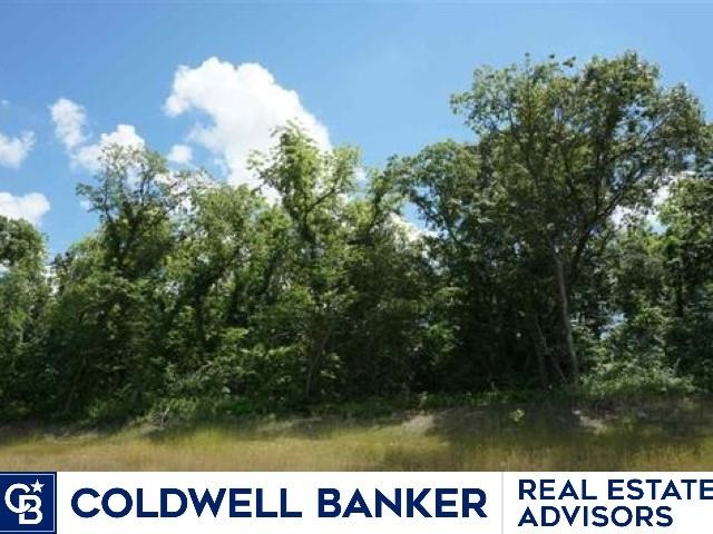 Great building lot off paved roads. Lots of trees.