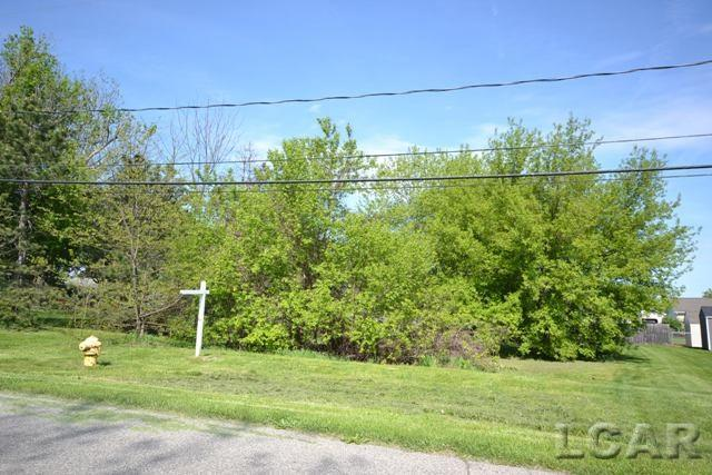 185 Melrose Avenue, Adrian, Michigan 49221, ,Vacant Land / LCAR,For Sale,Melrose Avenue,31319654