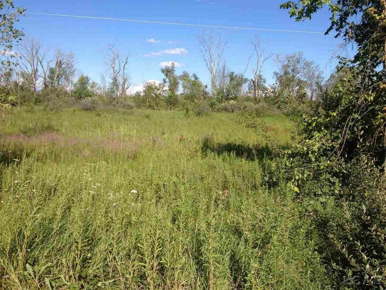 7000 Springville, Cambridge Twp, Michigan 49265, ,Vacant Land / Dockominium,For Sale,Springville,31361365