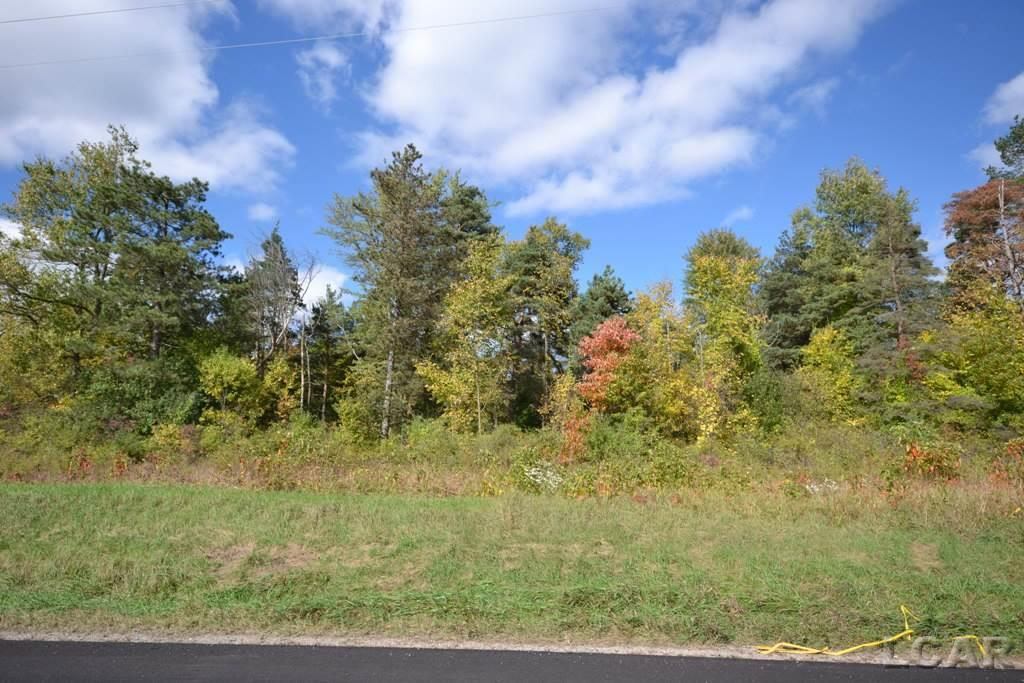 10770 Chicago Road, Somerset Twp, Michigan 49282, ,Vacant Land / Dockominium,For Sale,Chicago Road,31362374