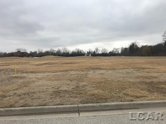 Morenci- Michigan 49256, ,Vacant Land / Dockominium,For Sale,Whitehouse Ct Lot 13,31373956