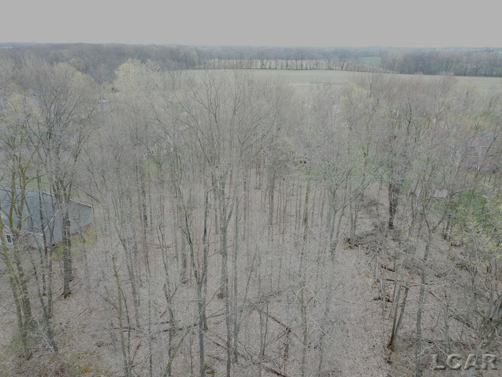 14 Shady Drive, Tipton, Michigan 49287, ,Vacant Land / Dockominium,For Sale,Shady Drive,31377611