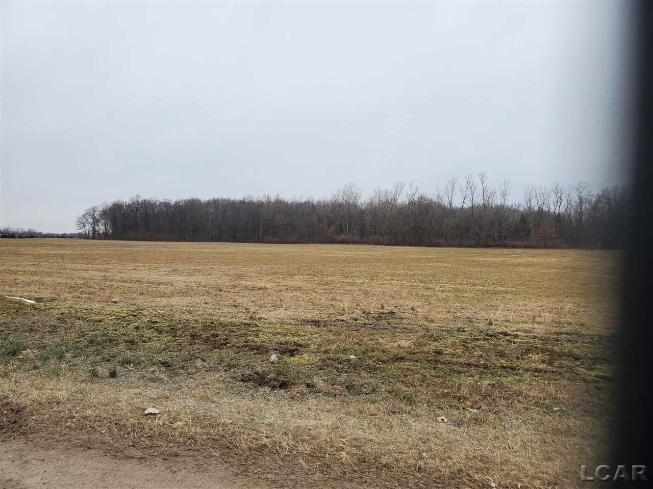 Beautiful peace of country on the edge of Monroe County.  18 acres approximate open farm land.  Balance is wooded.  Mini farm with wooded house setting?  Come take a look.