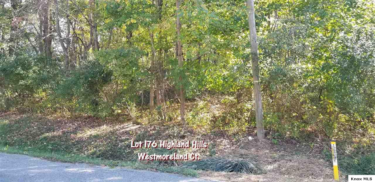 62 Westmoreland Ct., Howard, OH 43028