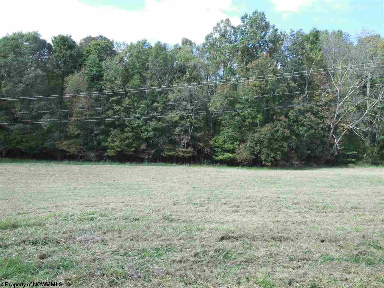 LOT A BEVERLY PIKE, GRAFTON, WV 26354