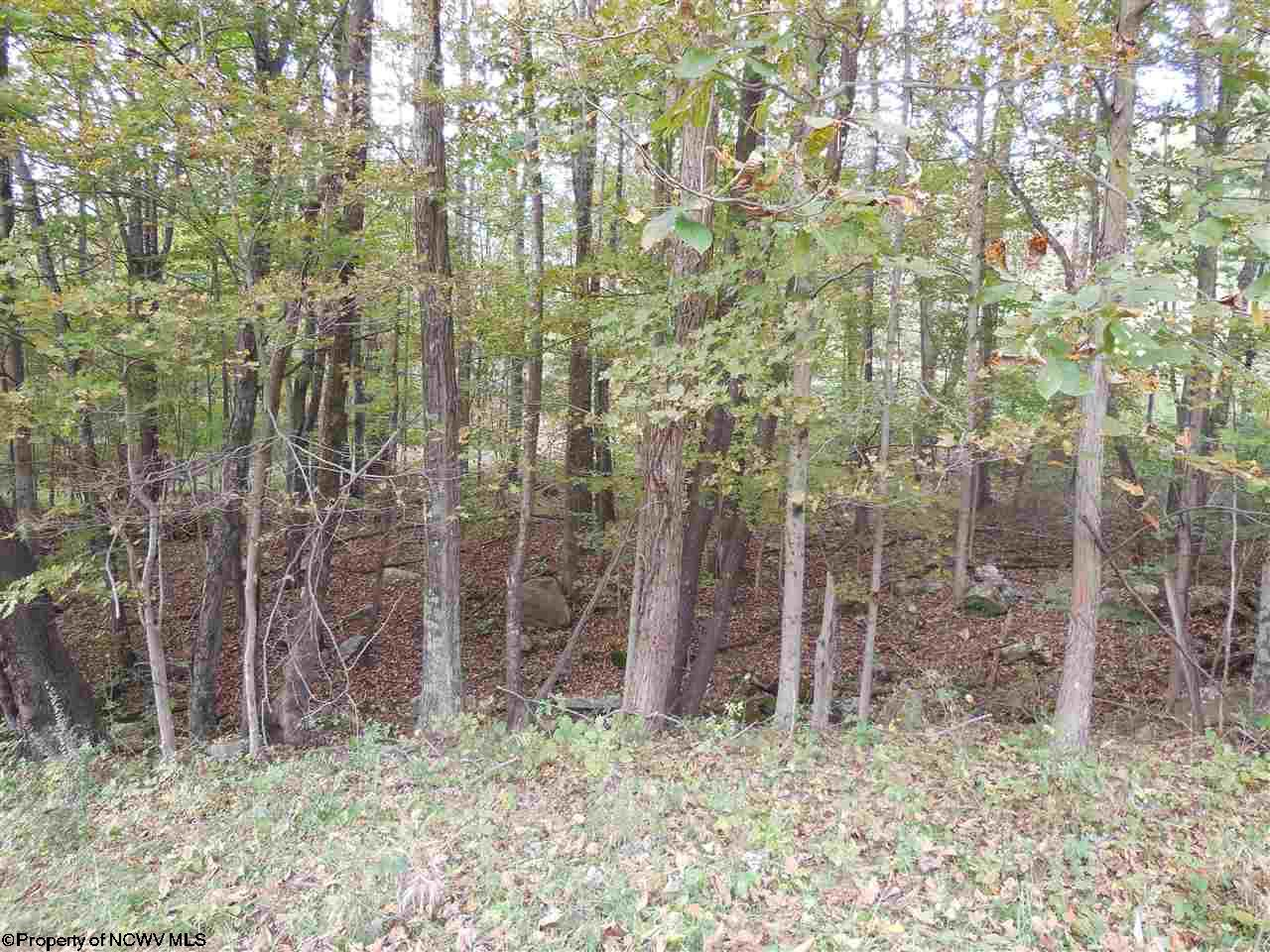 LOT A BEVERLY PIKE, GRAFTON, WV 26354  Photo 2
