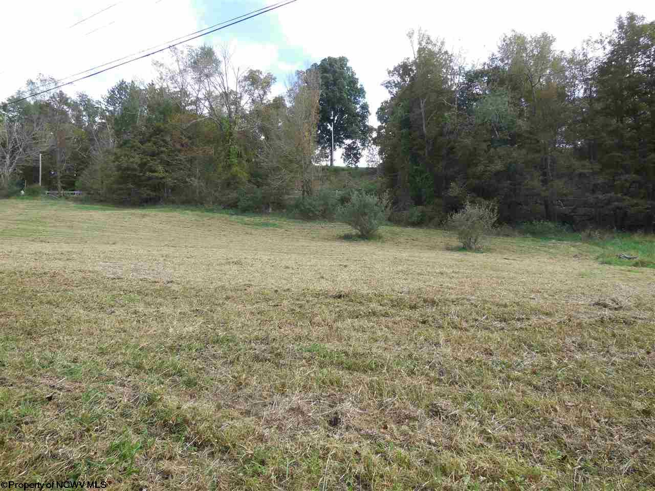 LOT A BEVERLY PIKE, GRAFTON, WV 26354  Photo 5