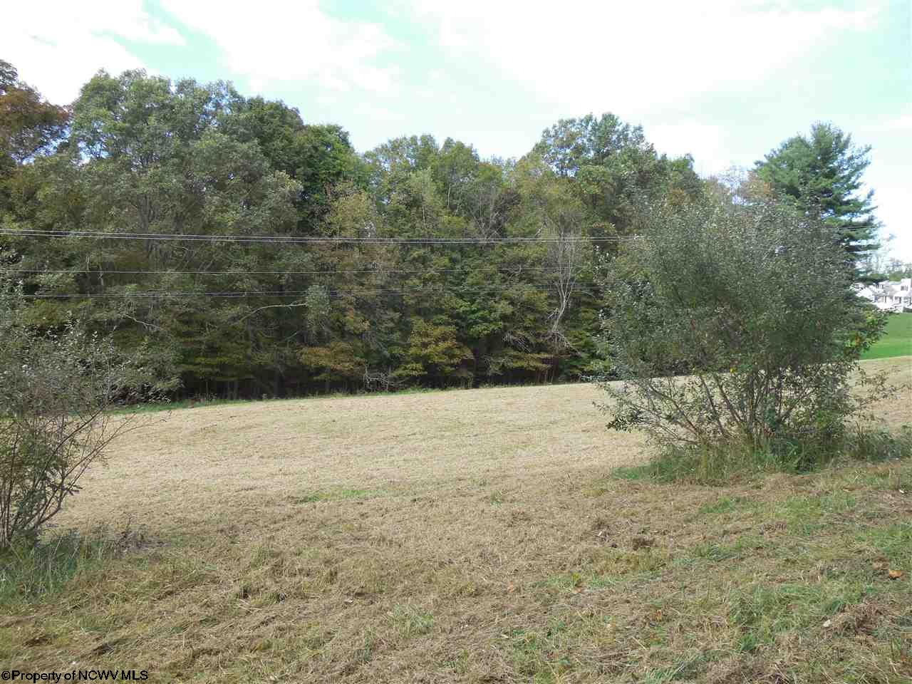 LOT A BEVERLY PIKE, GRAFTON, WV 26354  Photo 6