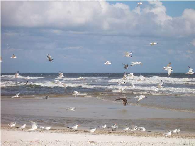 110 Pass Dr, Gulf Shores, AL 36542