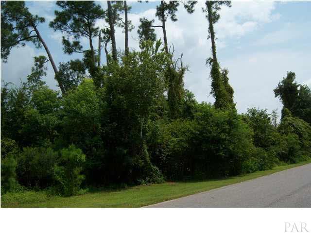 Lot 48 Andrew Jackson Dr, Milton, FL 32570
