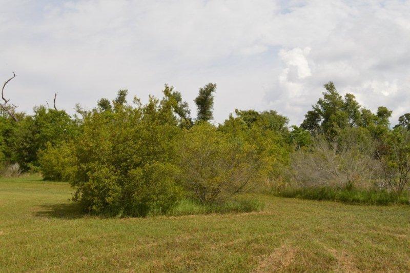 302 S Garcon Point Rd, Milton, FL 32583