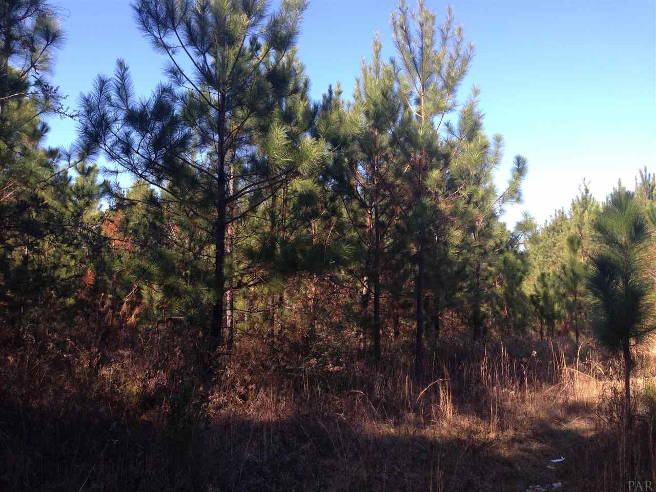 400 Neal Rd, Cantonment, FL 32533