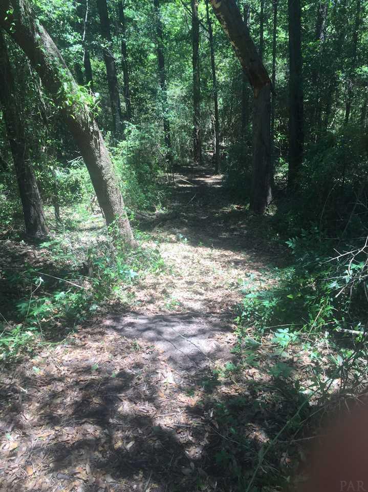 10055 Huntsman Path, Pensacola, FL 32514