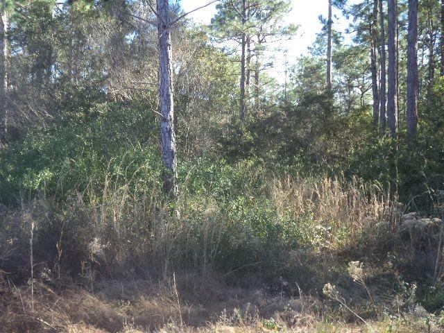 4724 Sequoya Dr, Pensacola, FL 32507