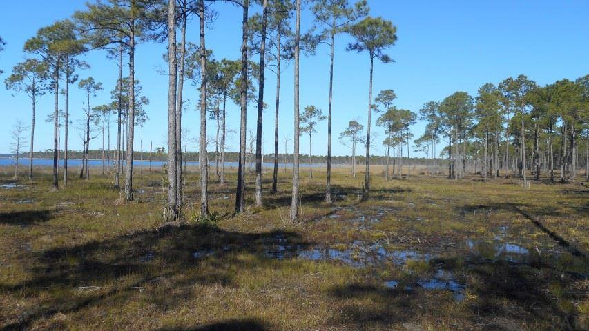 3509 Fishermans Ct, Pensacola, FL 32506