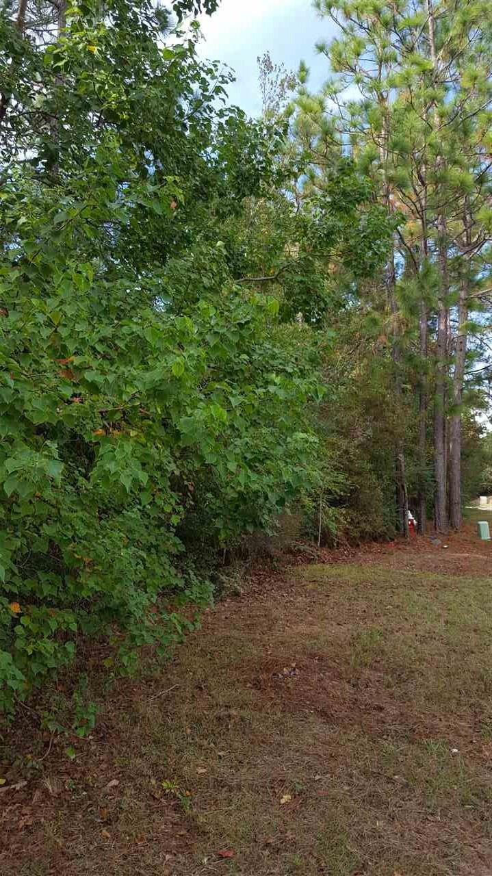 1046 Fleming Dr, Pensacola, FL 32514