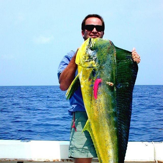 533 Deerpoint Cir, Gulf Breeze, FL 32561