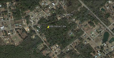 6300 Blk Donna Dr, Molino, FL 32577