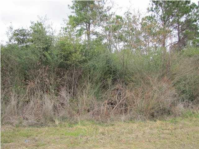 Sid Hayes Rd, Jay, FL 32565