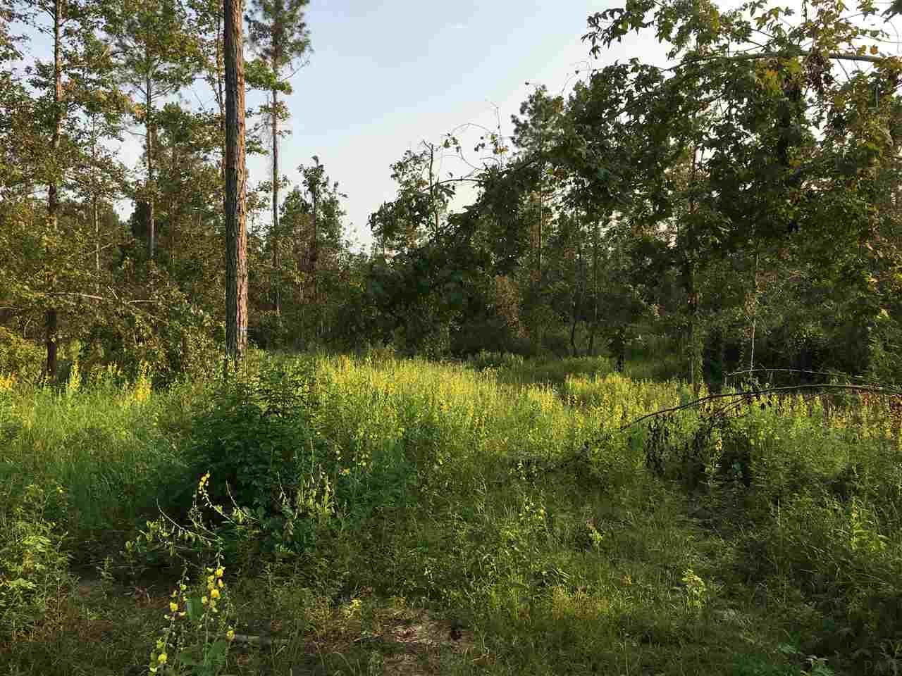 6752 Camp Henderson Rd, Jay, FL 32565