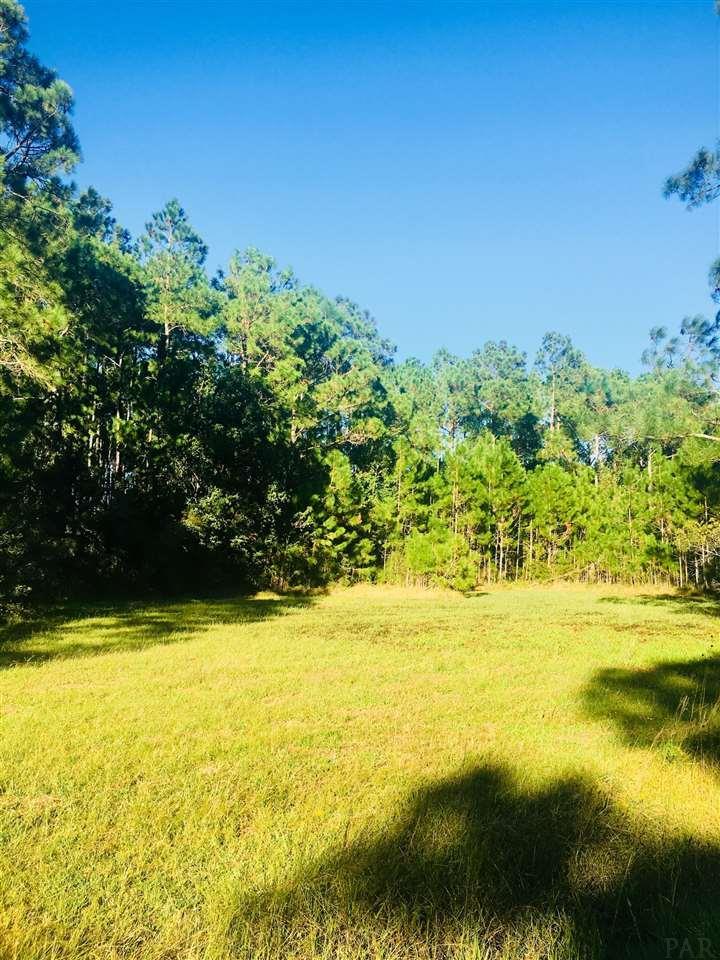 0 Raughton Rd, Milton, FL 32583