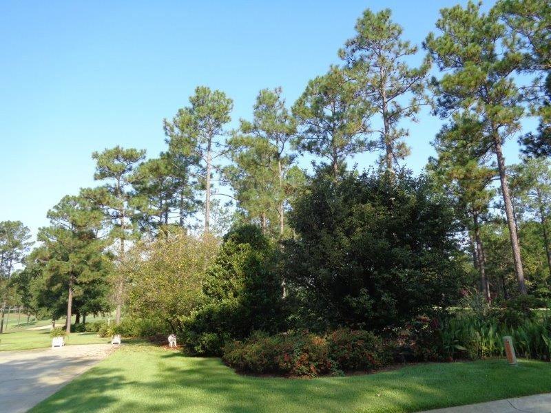 120 Juniper Creek Dr, Brewton, AL 36426