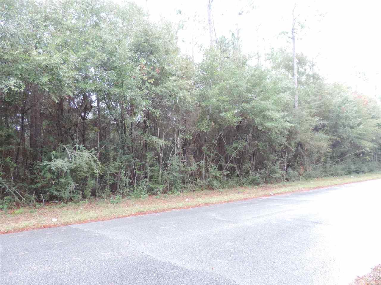 N Trailride Ln, Milton, FL 32570