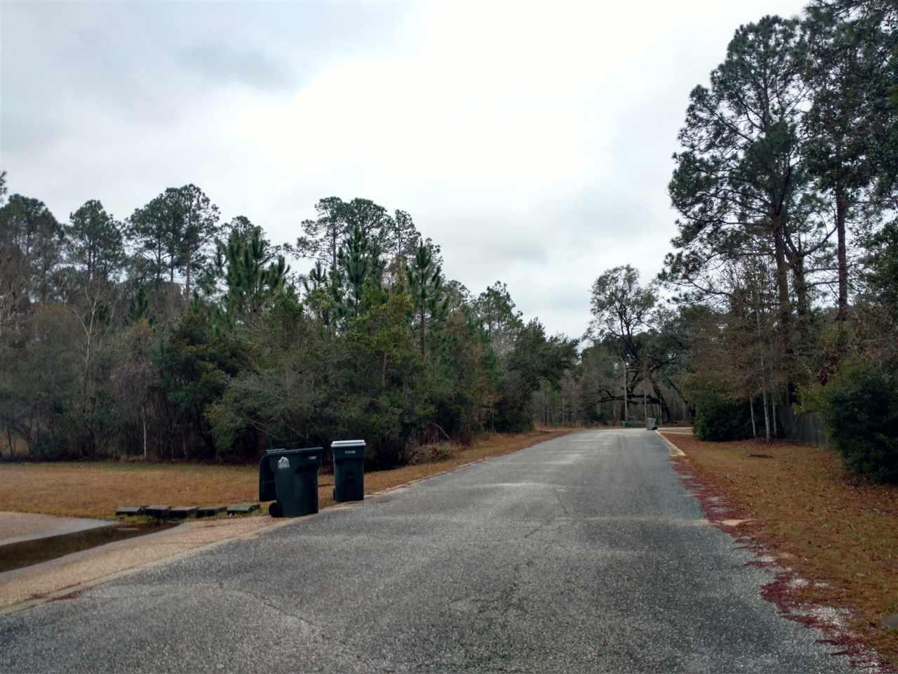 4733 Henry Wilson Creek Dri, Milton, FL 32583