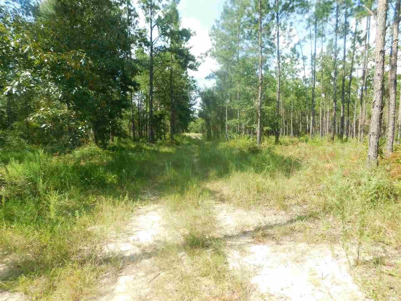 Lot 37 Ten Mile Rd, Pace, FL 32571