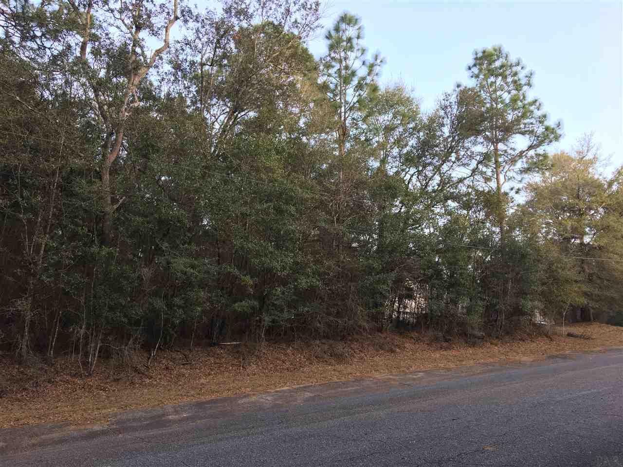 Lot 14 Riviera Dr, Milton, FL 32583