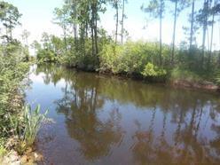 300 Blk Riola Pl, Pensacola, FL 32506