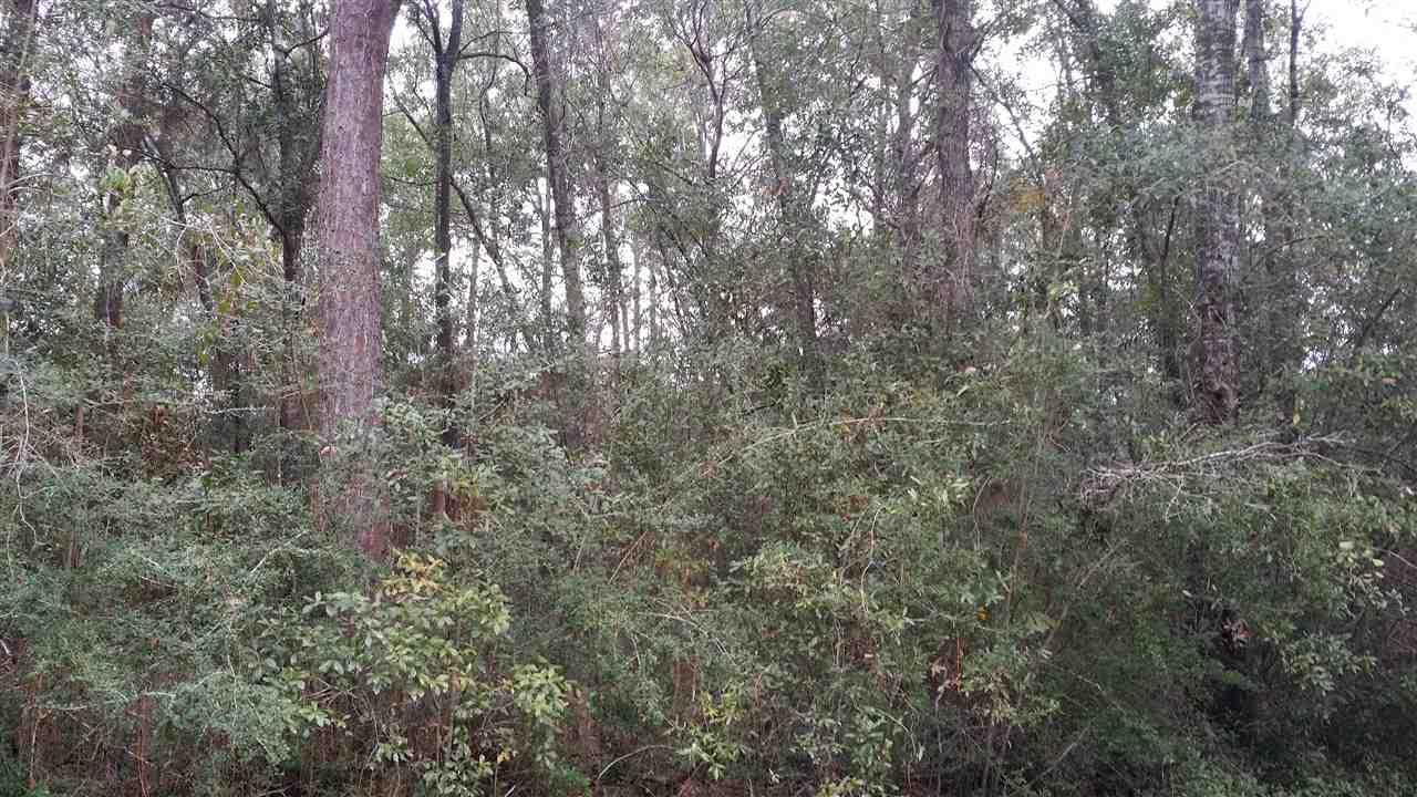 6884 -B Lonesome Pine Ln, Milton, FL 32570