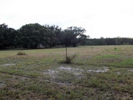 Avalon Blvd, Milton, FL 32583