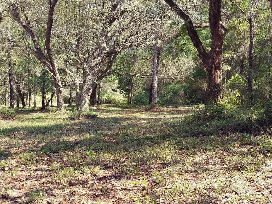 7966 Sasser Ln, Pensacola, FL 32526