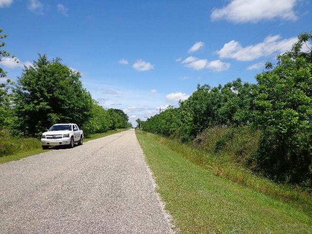 Pine Level Church Rd, Jay, FL 32565
