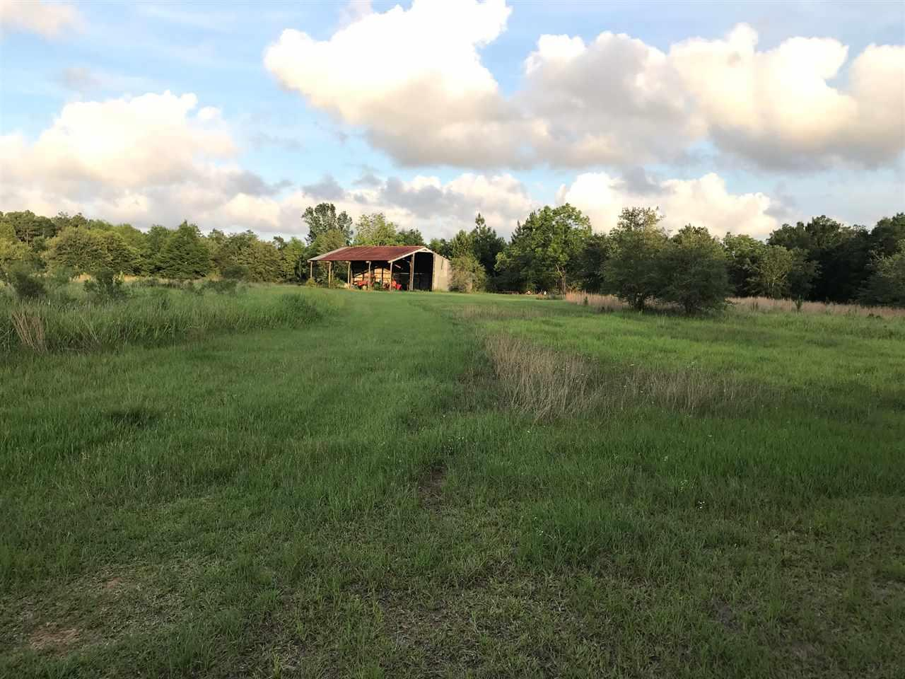 0 Kings Landing Rd, Seminole, AL 36574