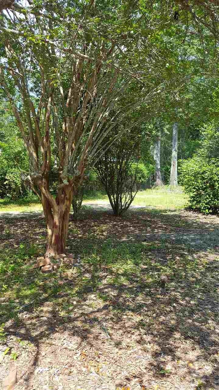 2855 Magnolia Ave, Pensacola, FL 32503