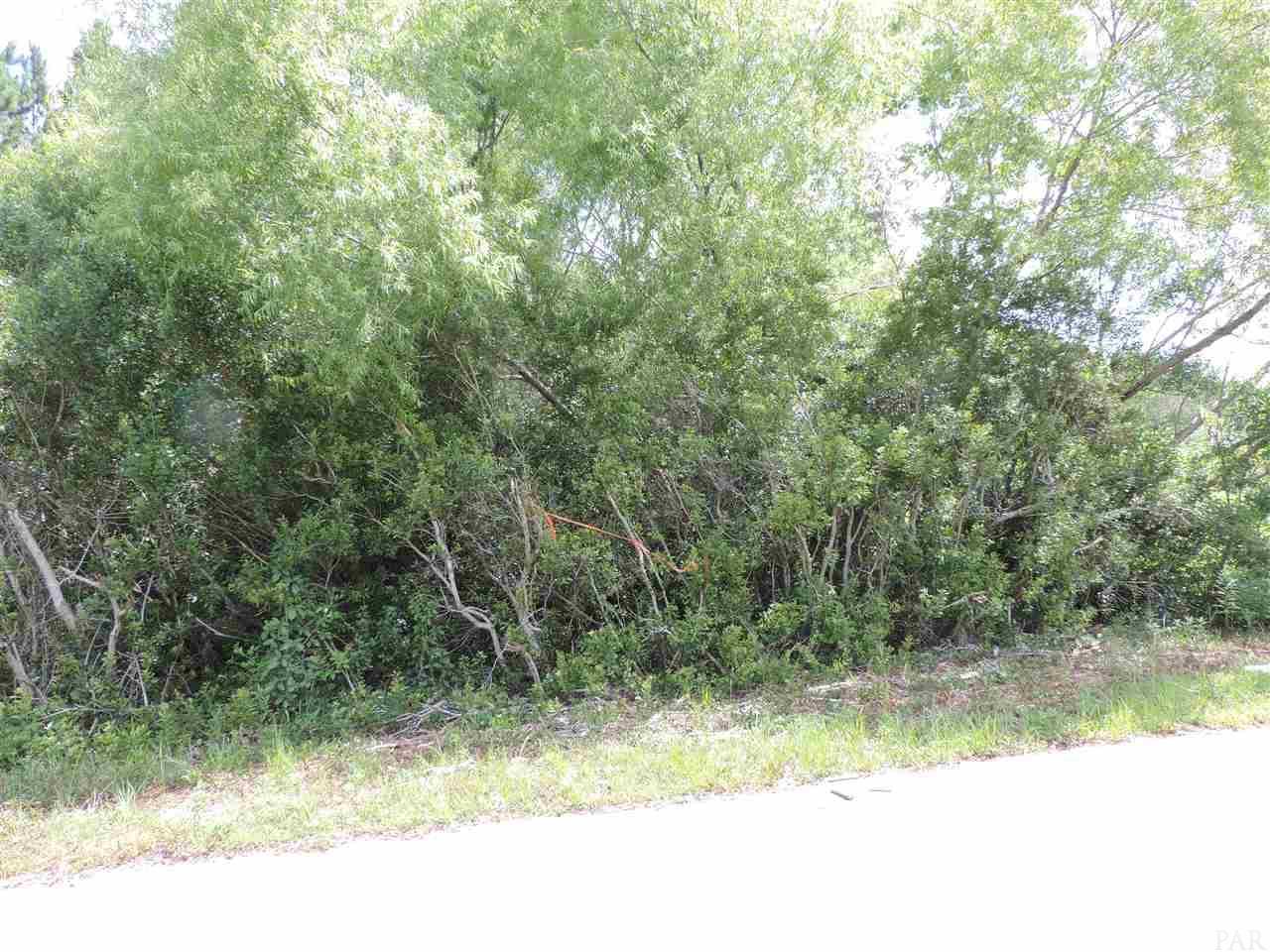00 Pearson Rd, Milton, FL 32583