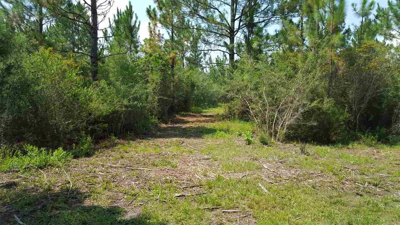 0000 Pat Brown Rd, Milton, FL 32570