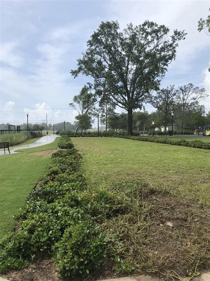 605 W Intendencia St, Pensacola, FL 32502