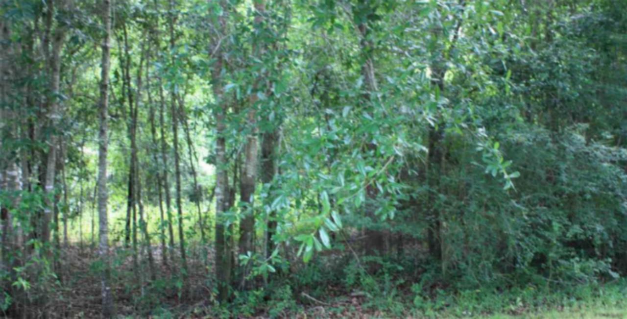 8541 Vickie St, Pensacola, FL 32514