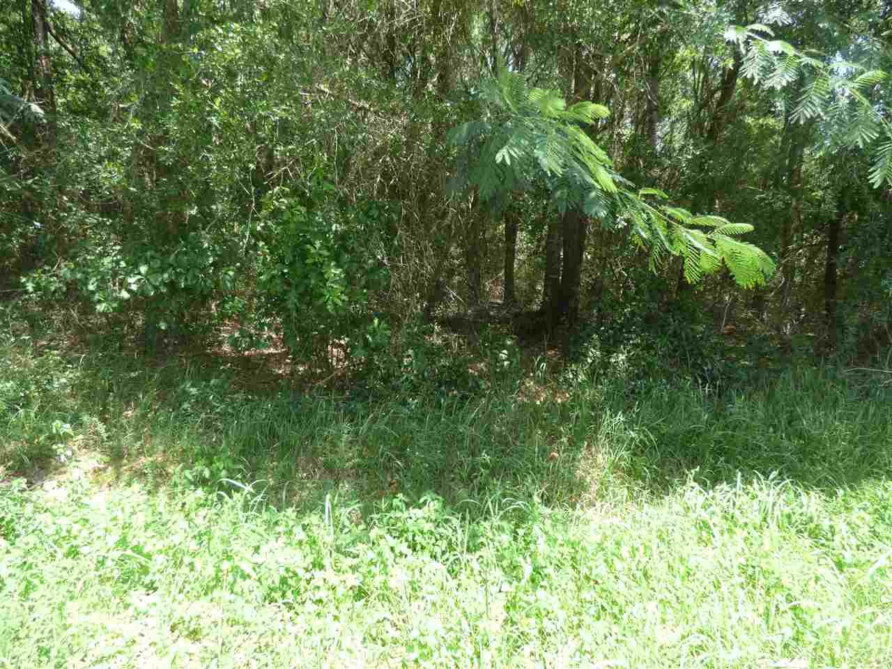 0006 Old Guernsey Rd, Pace, FL 32571