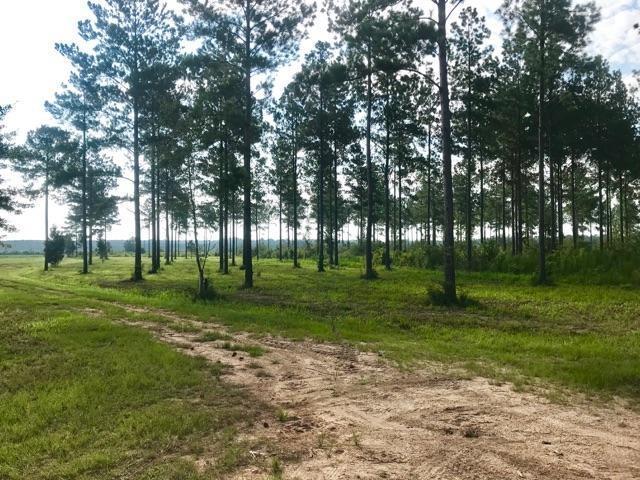 Chumuckla Hwy Rd 197, Jay, FL 32565