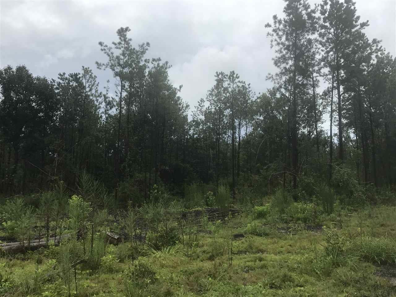 County Hwy 2a, Defuniak Springs, FL 32433