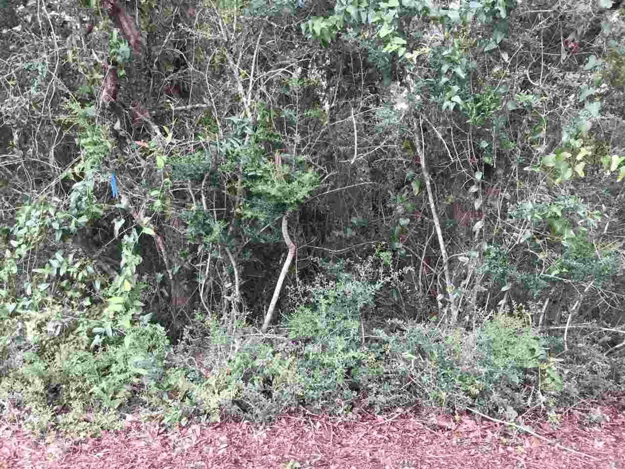 Lot 45 Andrew Jackson Dr, Pace, FL 32571