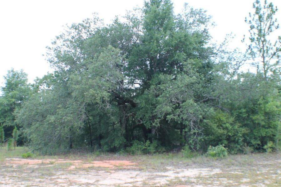 000 Old Bethel Rd, Crestview, FL 32536