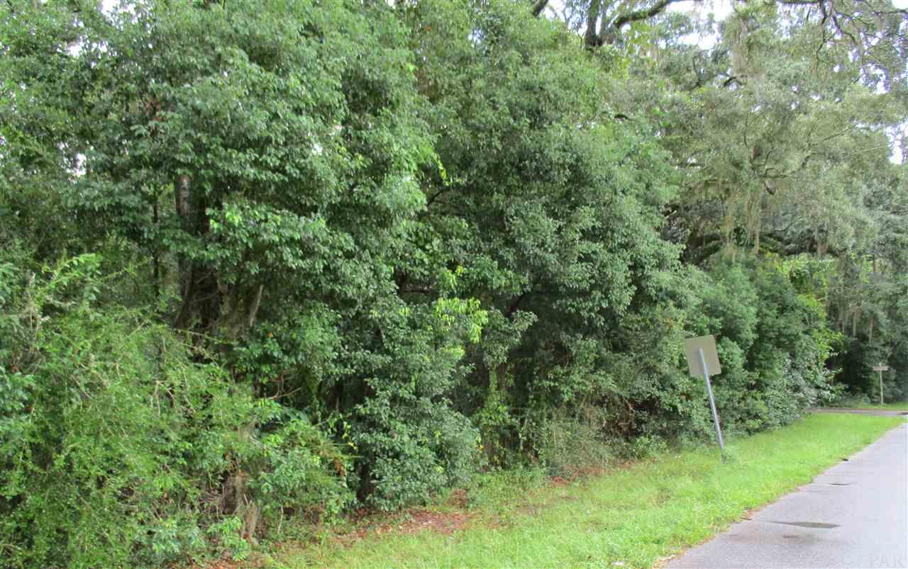 Lot E Pooley St, Milton, FL 32583